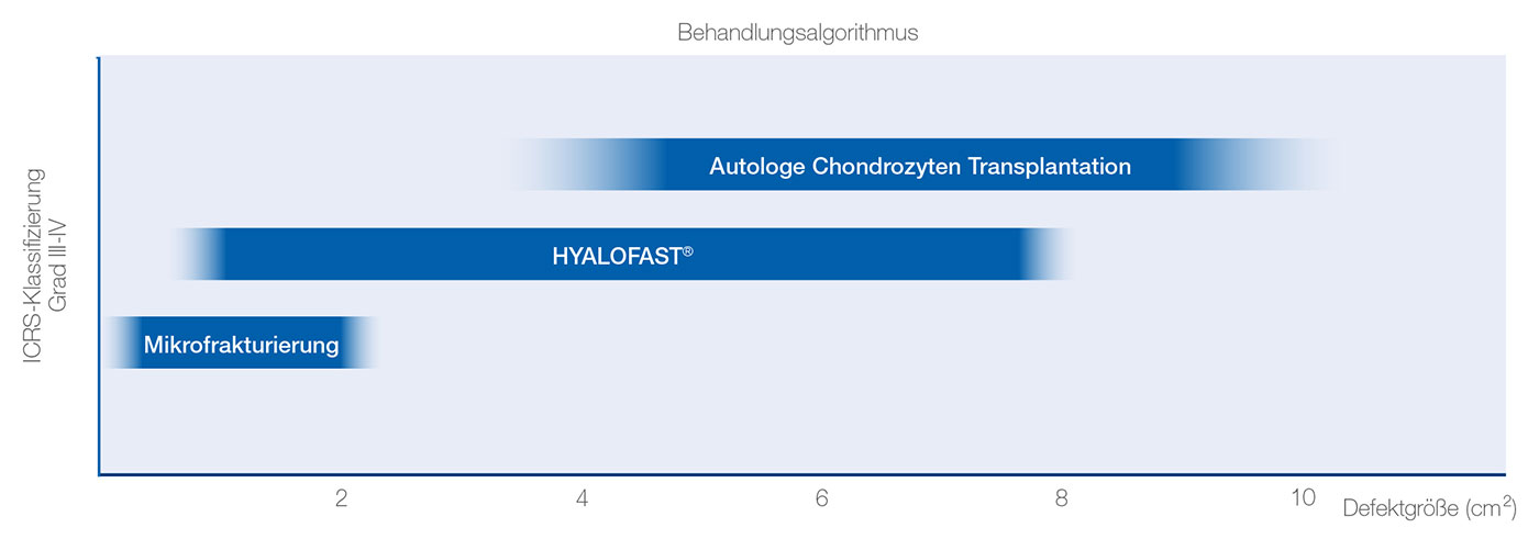 HyaloFast_image2 produktinfos